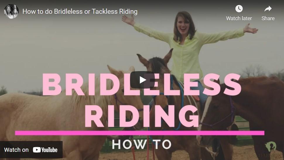How to Do BridleLess Riding