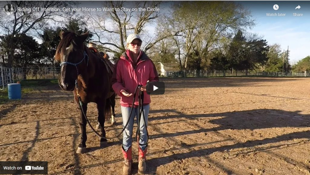 Riding Off Intention - how to Take Bridleless Riding to the Next level